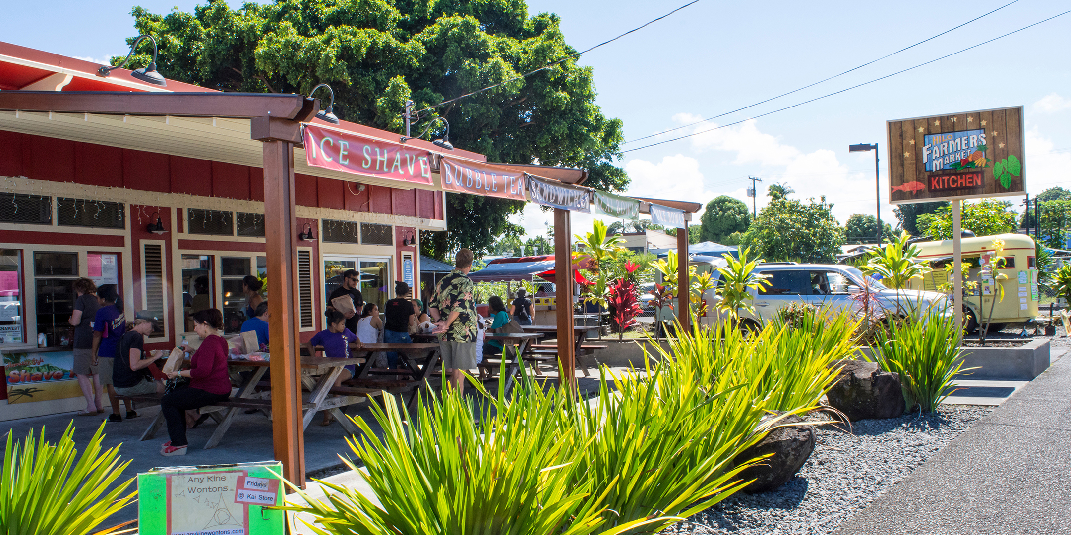 hawaii drivers license renewal hilo