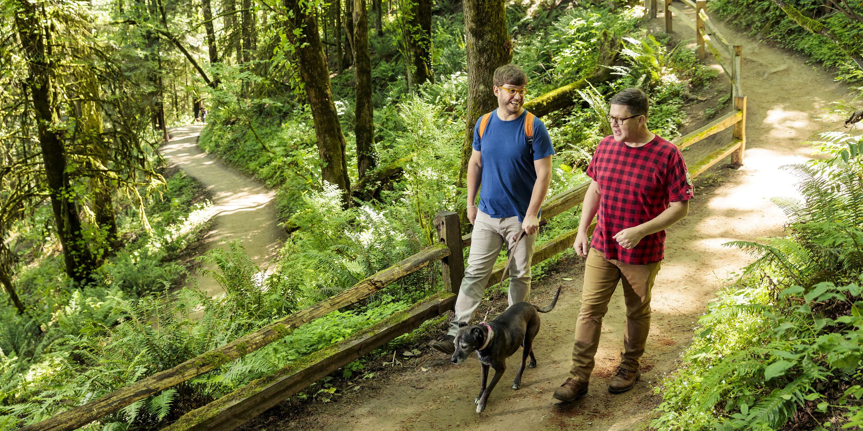 Two Men Walk A Dog On Trail In Forest Park Portland Oregon