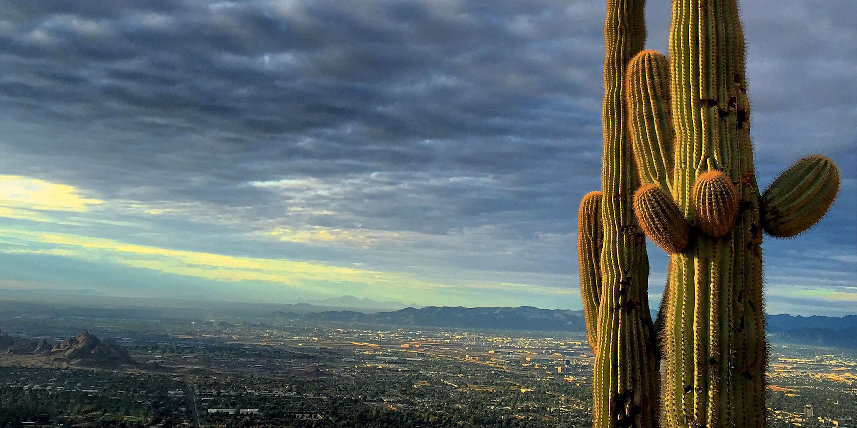 Phoenix, Arizona: Must-Visit Spots and Hidden Gems | Via